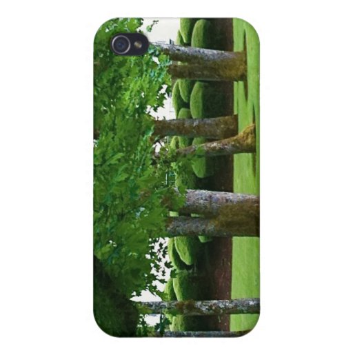 Tree Scape iPhone case iPhone 4 Cases