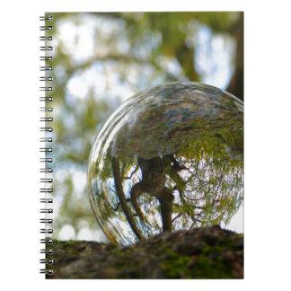 Tree seen through a crystal ball notebook