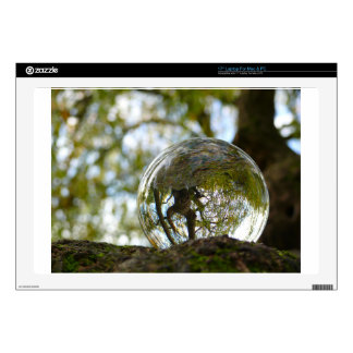 """Tree seen through a crystal ball skin for 17"""" laptop"""