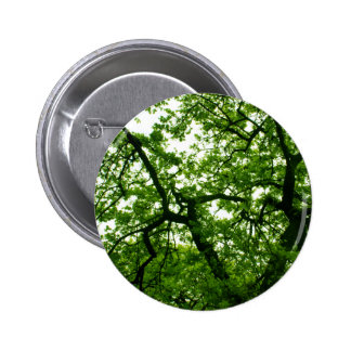 Tree shelter button