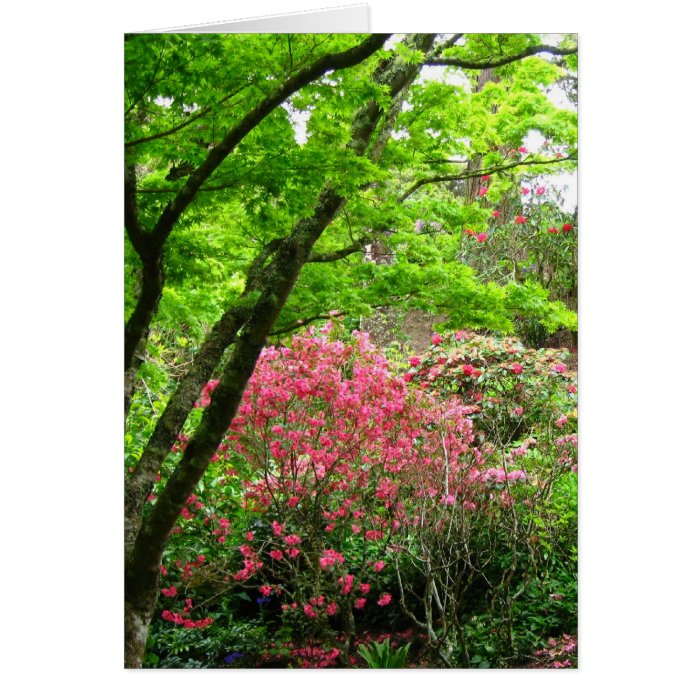 Tree Sheltering Pinks Greeting Card