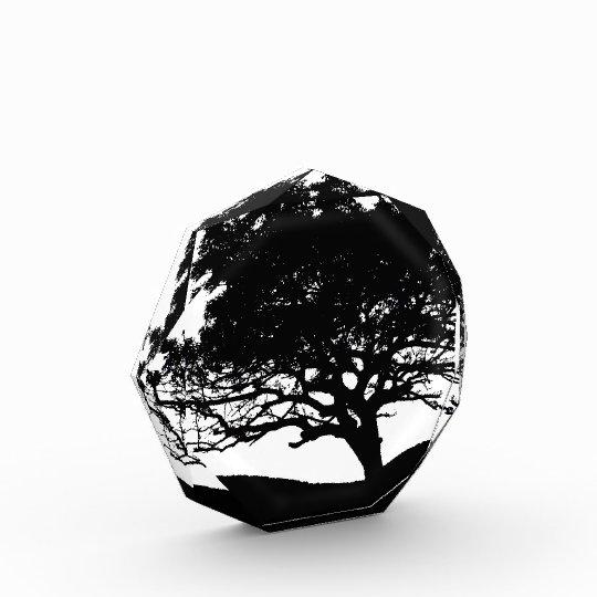 Tree Silhouette Acrylic Award