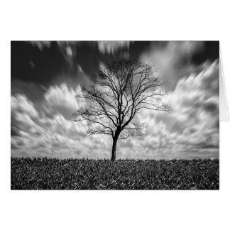 tree silhouette black and white landscape stationery note card