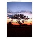 tree  silhouette cards
