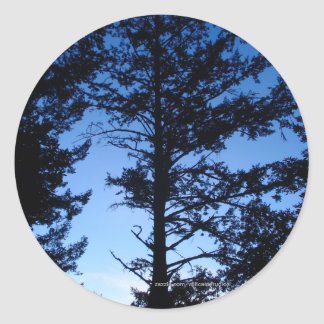 Tree Silhouette Classic Round Sticker