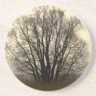 Tree silhouette drink coasters