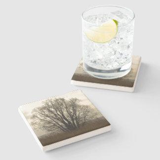 Tree silhouette stone beverage coaster