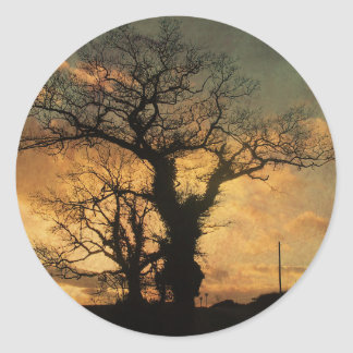 Tree Silhouette Photo Classic Round Sticker