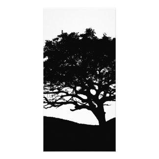 Tree Silhouette Custom Photo Card