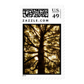 Tree Silhouette Postage Stamps