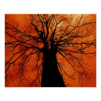 Tree Silhouette - Poster