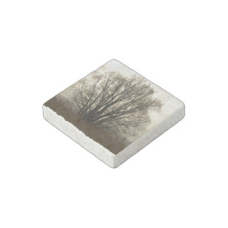 Tree silhouette stone magnet