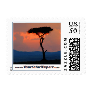 Tree Silhouette & Sunset Stamp (SMALL)