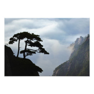 Tree silhouetted at sunrise, Yellow Mountain, Photo Print