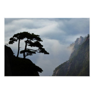 Tree silhouetted at sunrise, Yellow Mountain, Poster