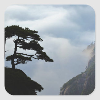Tree silhouetted at sunrise, Yellow Mountain, Stickers