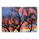 Tree Silhouettes at Dusk Stationery Note Card