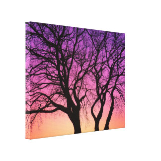 Tree Silhouettes in the Sunset - Canvas Print
