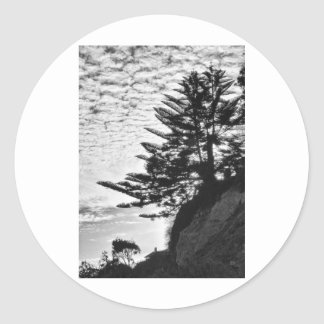 Tree Siloutte Classic Round Sticker