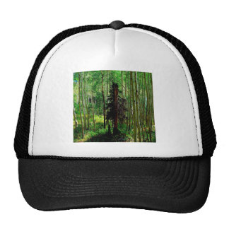 Tree Skinny Birch Trucker Hat