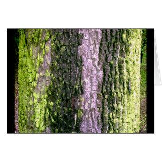 Tree Skins Card