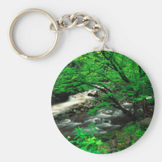 Tree Smoky Mountains National Key Chain