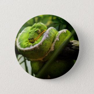 Tree Snake Button