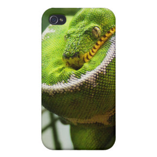 Tree Snake iPhone Case Covers For iPhone 4