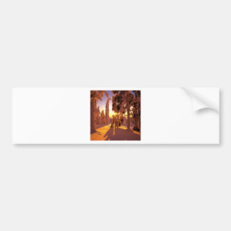 Tree Snow Covered Forest Finland Bumper Stickers