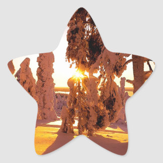 Tree Snow Covered Forest Finland Star Sticker