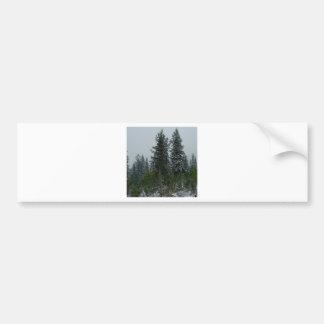 Tree Snowey Conifer Hill Bumper Sticker