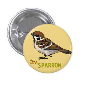 tree sparrow pinback buttons
