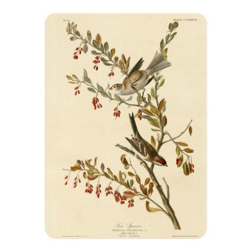 Tree Sparrow Card