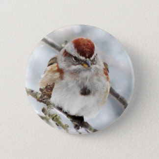 Tree Sparrow in Winter Pinback Button