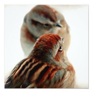 Tree Sparrow Photo Card