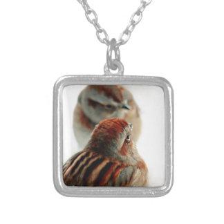 Tree Sparrow Photo Necklaces