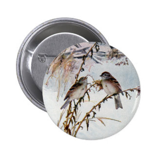 Tree Sparrows in Winter Pin