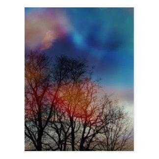 Tree Spirits Postcard
