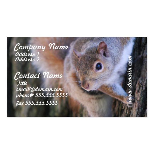 Tree Squirrel Business Cards