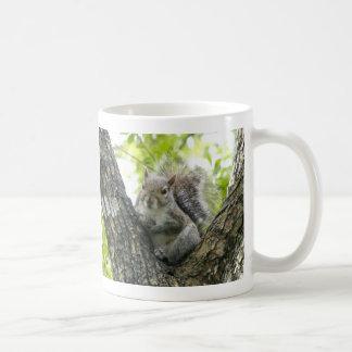 Tree Squirrel Coffee Mug