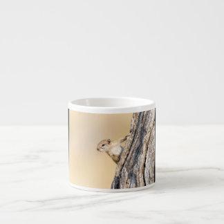 Tree squirrel espresso cup