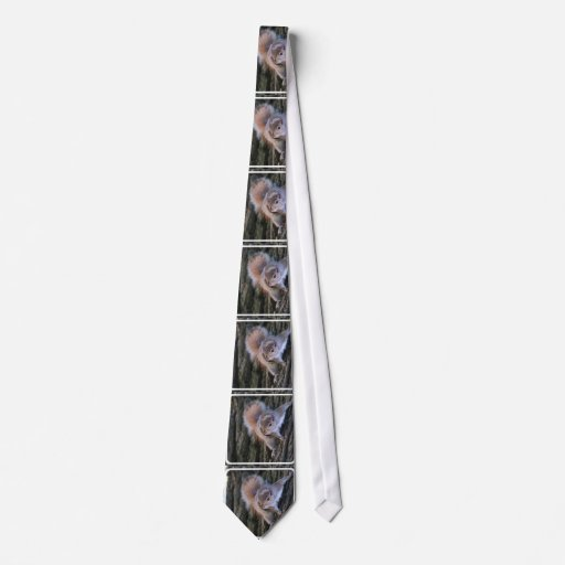 Tree Squirrel Neck Tie