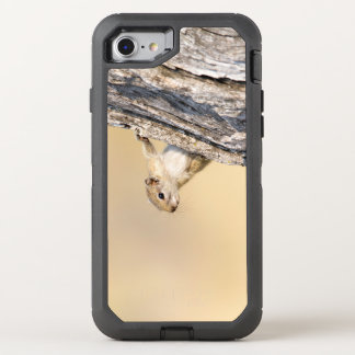 Tree squirrel OtterBox defender iPhone 7 case