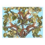 Tree Squirrels Animal Print Squirrel Pattern Print Postcard