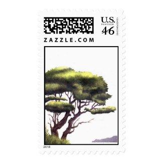 tree stamp stamp