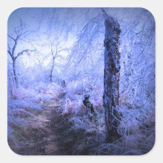Tree Stump by Trail Square Sticker