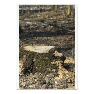 Tree stump card