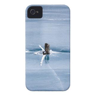 Tree Stump in Ice iPhone 4 Cases