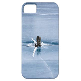Tree Stump in Ice iPhone 5 Cover