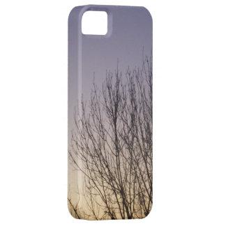 Tree sunset photographic phone case